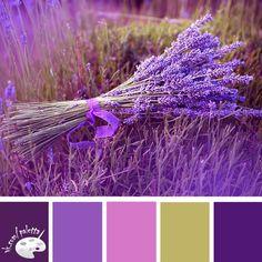 lavender - color palette