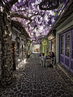 Awesome Cobblestone Street with purple flowers
