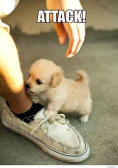 :3 So cute