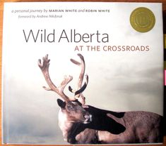 Wild Alberta at the crossroads : a personal journey : traces the authors' seven-year journey through Alberta's mountains, foothills, grasslands, parkland, boreal forest, and Canadian Shield. Their outstanding photography and inspiring stories encourage everyone to get out and enjoy Alberta's glorious wild lands and wildlife. The Crossroads, Physical Geography, Geology, Social Studies, Authors, Wildlife, Journey, Mountains, History