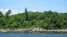 david's island