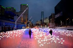 """""""Luminous Pathway Light Therapy"""" installation in the Quartier des Spectacles, Montreal. Especially beautiful how the snow on the ground reflects and diffuses the light so brilliantly. The organic forms look like something out of Avatar."""