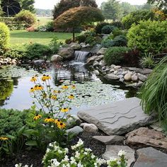 Beautiful blue and healthy water can be achieved with Organic Pond products!  www.organicpond.com