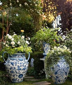 All About Container Gardening - Urban Gardening Blue And White China, Blue China, Container Plants, Container Gardening, Flower Vases, Flower Pots, Beautiful Gardens, Beautiful Flowers, Pot Plante