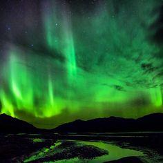 beautiful aurora near Mt Mckinley Alaska Travel, Beautiful Sky, Night Skies, Cool Photos, Northern Lights, National Parks, Scenery, Denali Alaska, Image