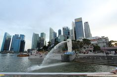 Even if you only have a few hours in Singapore, you may be able to snag a free city tour from the airport.