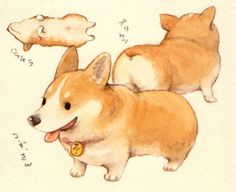 Corgi drawing ★ || CHARACTER DESIGN REFERENCES | キャラクターデザイン • Find more artworks at https://www.facebook.com/CharacterDesignReferences & http://www.pinterest.com/characterdesigh and learn how to draw: #concept #art #animation #anime #comics || ★