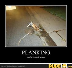 Planking ~ You're Doing It Wrong