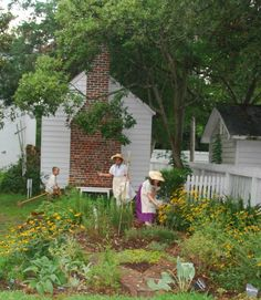 The Herb Garden, located behind the Apothecary and Doctor's Shop, features a variety of plants and herbs that are an example of what was used for medicinal and cooking purposes during Colonial times. The Herb Garden is maintained by the NC Cooperative Extension Service Master Gardener Volunteers of Carteret County. (Photo by Beaufort Historic Site)