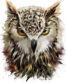 Owl by Kajenna.deviantart.com on @DeviantArt