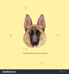 German Shepherd Dog Portrait Vector Illustration In Modern Geometric Style Isolated On Yellow Background - 426135649 : Shutterstock