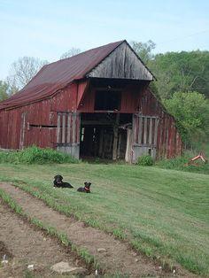 Neat old barn...