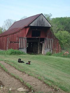 Neat old barn...