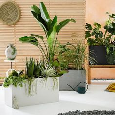 10 Planters to Celebrate Earth Day via Design*Sponge