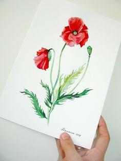 Poppy Flower Painting Original Watercolor Red Poppies Poppy watercolor Watercolor Flower painting Red flowers Botanical illustartion