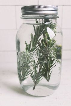 How to make rosemary-infused vodka
