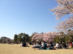 皇居 東御苑 (Imperial Palace East Garden) itt: 千代田区, 東京都