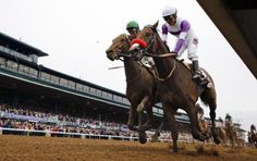 Unbeaten Nyquist all set to start his Run to the Roses