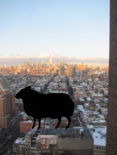 Black Sheep @ NYC, BBH