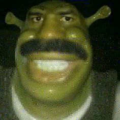Images Gif, Funny Images, Funny Photos, Mood Images, Funny Profile Pictures, Funny Reaction Pictures, Shrek, Stupid Memes, Dankest Memes