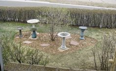 This bird bath island is out in the open but has bushes nearby so birds can escape predators or find a place to preen themselves after splashing around in the water.