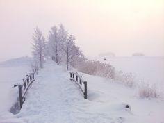 Winter Wonderland by Boatshallow