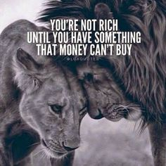 Wisdom Sayings & Quotes QUOTATION – Image : Quotes Of the day – Description You're not rich until you have something that money can't buy Sharing is Caring – Don't forget to share this quote with those Who Matter ! Positive Quotes, Motivational Quotes, Inspirational Quotes, Positive Mind, Positive Vibes, Lion Quotes, Devil Quotes, Animal Quotes, Money Cant Buy