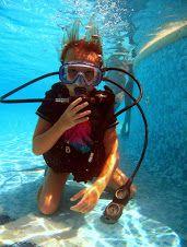 Free Pool, Fish, Pets, Animals, Animales, Animaux, Pisces, Animal, Animais