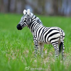This is the United States of Teresa Perleberg production of wool felt zebra, the body has a skeleton of iron support, the eyes are made of glass beads.  As for the annoying black and white stripes, the author says it's extra fun for her.