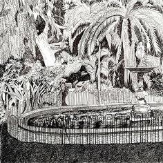 Companys Garden - fine art drawings for sale Fine Art Drawing, Art Drawings, Black And White Artwork, South African Artists, Fine Art Paper, Giclee Print, Art Projects, Fine Art Prints, Kitty