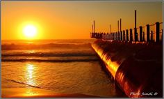 Durban. South Africa What A Wonderful World, Adventure Style, Adventure Travel, Sunrises, Hibiscus, Wonders Of The World, South Africa, Coast, Sun Moon