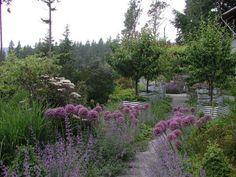 hageinspirasjon liten hage - Google-søk