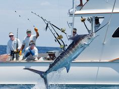 Marlin Fishing Photography, Richard Gibson