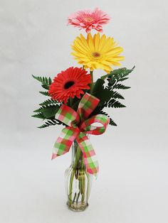 Triple Gerbera Daisy Budvase-A Winner for Any Occasion. 3 Multi Colored Fresh Gerbera Daisies arrive in a classic clear budvase with a plaid bow attached. Beach Flowers, Fresh Flowers, Spring Flowers, Get Well Flowers, Same Day Flower Delivery, Spring Has Sprung, Bud Vases, Floral Arrangements, Daisy