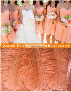 PEACH  Ostrich Feathers 10-12  inch 100 Pieces