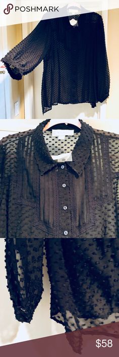Beyond Vintage Anthropologie Black Sheer Silk Top Beautiful brand new top. Sheer silk with lovely details and texture. Button down. MSRP $290. Size 2X but please go by measurements. Anthropologie Tops Blouses
