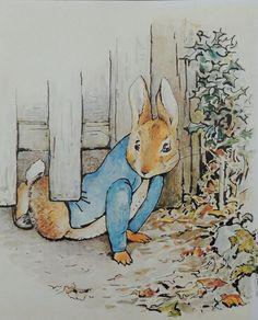 Pieter konijn is te vinden in de boeken van Beatrix Potter, Pieter is een erg ondeugend konijntje! http://www.bzof.nl/zoeken/?query=pieter+konijn