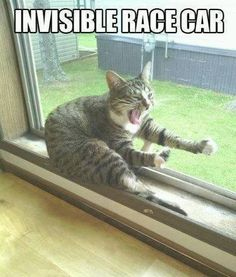 Invisible Racecar