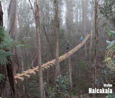 Haleakala Skyline Tour, Maui, Hawaii  T&L World's Coolest Ziplines at:  http://www.travelandleisure.com/articles/worlds-coolest-ziplines/12