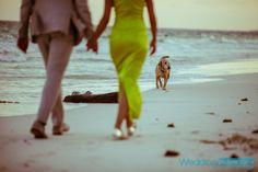#weddings #weddingphotography #beachweddings #tulum #tulumweddings #rivieramaya #rivieramayaweddings #tulumphotographer #weddingphotographer #portrait #love #destinationweddings