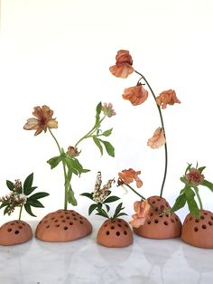 TERRA COTTA FLORAL FROG / BOWS AND ARROWS FLOWERS