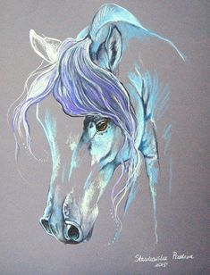 Magic of the Horse