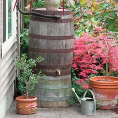 Rain water collection to water the garden.