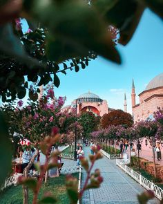 Islamic Girl, Blue Mosque, Hagia Sophia, Istanbul Turkey, Travel Bugs, Old City, Antalya, Nice View, Dolores Park