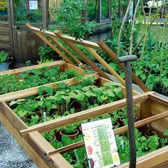 Modern country tuin * idees cold frame, garden и edible gard Back Gardens, Outdoor Gardens, Organic Gardening, Gardening Tips, Gardening Supplies, Rainwater Harvesting, Garden Care, Edible Garden, Modern Country