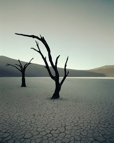 Jimmy Nelson Namibia, Dead Vlei, Sossusvlei From Before They Pass Away