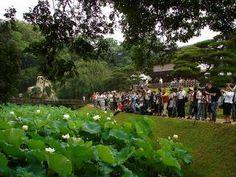 Okayama 岡山(おかやま) 岡山後楽園「観蓮節」 昭和31年から始まった行事です。  早朝4時から開園し、花葉の池に咲く「一天四海」と井田に咲く「大賀ハス」の開花の様子を観賞することができます。  当日は琴や尺八の演奏の他、鶴鳴館では茶席、栄唱の間では点心席が設けられます。 開催時間:2013年7月7日(日)4:00~8:00  交通アクセス:岡山駅から徒歩約25分、後楽園駐車場(500台)1時間毎100円