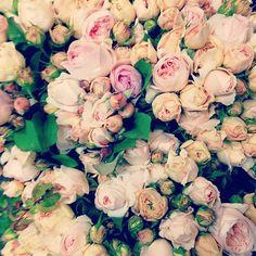 http://farmgirlflowers.com
