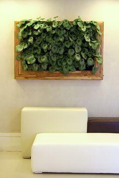 Vegetação em Interiores ~ Mais Arquitetura