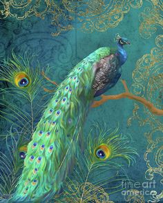 Regal Peacock 3 Midnight Painting by Audrey Jeanne Roberts